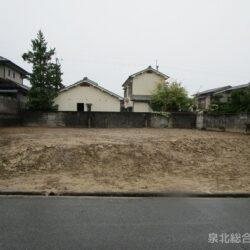 堺市南区茶山台3丁 更地状態の売り土地2区画です 前面道路との高低差も少ない地勢です