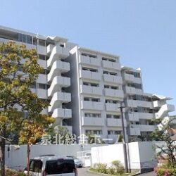 堺市南区 桃山台 ルモンベル泉北桃山公園 100㎡超の4LDKです ペット暮らせるマンションです 室内リフォーム完了済みで即入居可能です